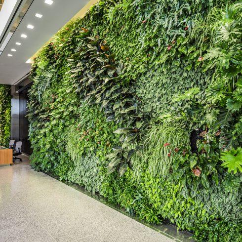 Green wall in Wheaton HQ lobby
