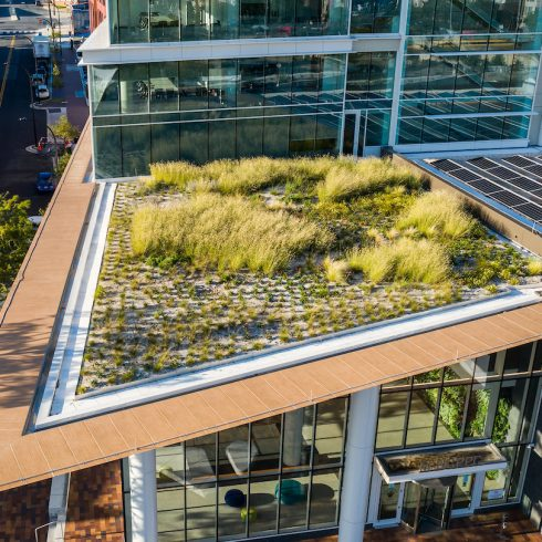 Garden on Wheaton HQ building entrance roof