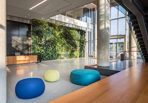 Wheaton HQ lobby, green wall and blue and yellow seating and green wall in background