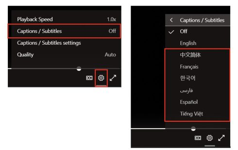 """Two screenshots. First shows gear icon menu with """"Captions / Subtitles"""" option highlighted. Second shows """"Captions / Subtitles"""" menu with list of available languages."""